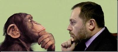 Quanto siamo diversi dagli scimpazè?