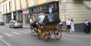 Carrozzella dei cavalli a Sorrento