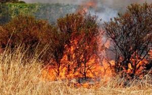 Caldo torrido - Rischio incendio