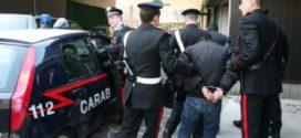 Blitz antidroga contro i D'Alessandro e i Di Martino, Cuomo (SOS Impresa): «Grazie ai carabinieri, lavoro egregio»
